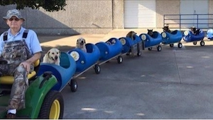 Construyó un vehículo especial para poder llevar a sus perros adoptados de viaje