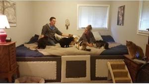 Construyeron una cama realmente grandísima ya que... sus animales querían dormir