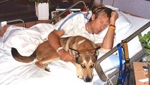 ¡Los médicos le dijeron al perro de salir del cuarto de su dueño, entonces ocurr