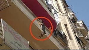 Este perro colgaba desde el balcón 5 horas. ¡Esta historia hace que te hierva la