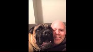 ¡Lo que hace este perro para que su dueño se calle, es tan gracioso que os costa