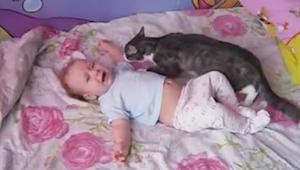 Este niño se puso a llorar. ¡La reacción de su gato os sorprenderá!