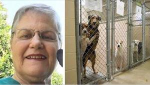 Esta señora mayor preguntó por un perro que nadie quería. ¡Mirad con quién volvi